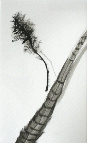 Twig and Feather Study by Nancy Niederhauser